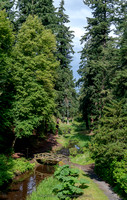 Debdon Burn and Pinetum, Cragside